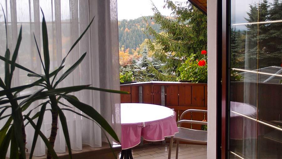 ferienwohnung mit sauna pool und garten im vogtland bad elster. Black Bedroom Furniture Sets. Home Design Ideas